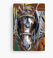 Disney Horse Canvas Print