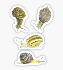 Slippery Snails 1 Sticker