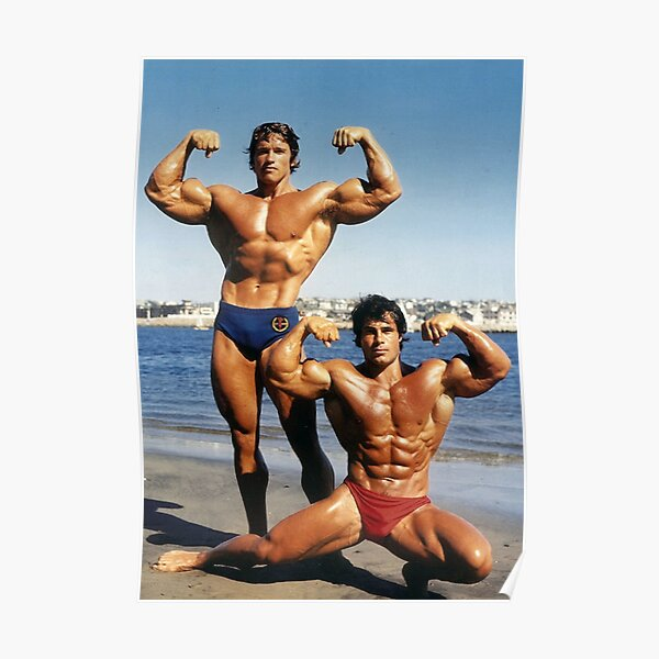 Franco and Arnold on the Beach Poster