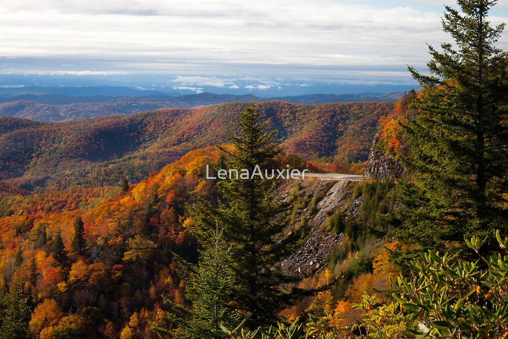 Blue Ridge Parkway by LenaAuxier