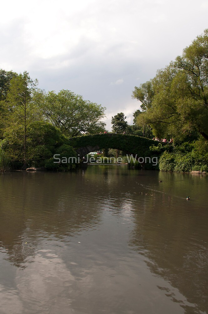 Gapstow Bridge by Sami Jeanne Wong