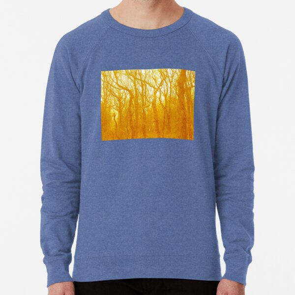 VELVET WOOD Yellow Lightweight Sweatshirt