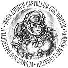 Castellum - The Glass Parachute by Villipede