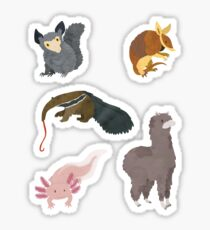 A is for... Animal Sticker