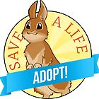Adopt a Bunny! by Jaki Hong