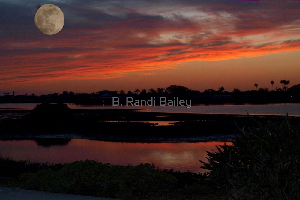 Sun has set and the moon has risen by ♥⊱ B. Randi Bailey
