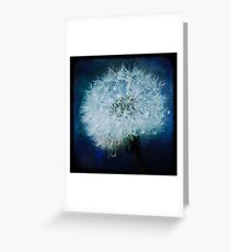 Dandelion TTV Greeting Card