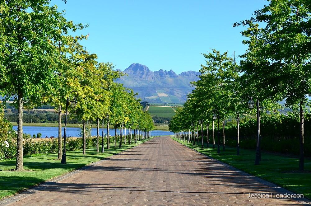 Stellenbosch Wine Country by Jessica Henderson