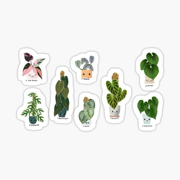 Philodendron Sticker  Sticker