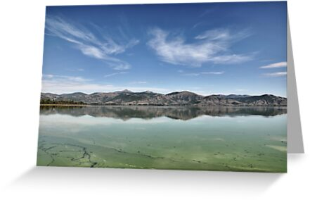 Blue and Green by Kostas  Plousios