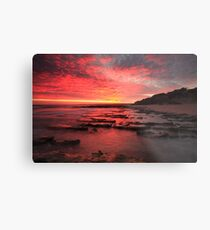 i visit you in another dream ... Metal Print