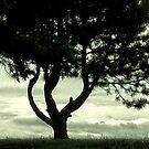 Tree of Hearts by Riggzy