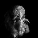 heads xi by Graham Dean