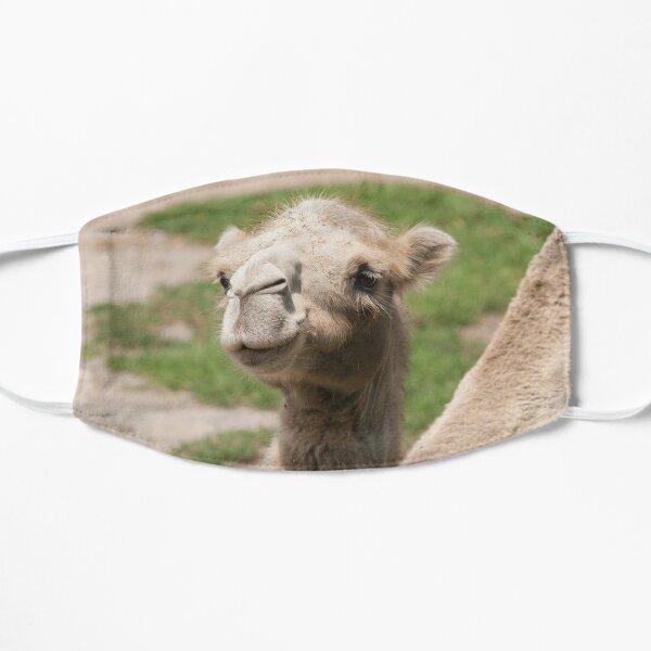 camel Flat Mask