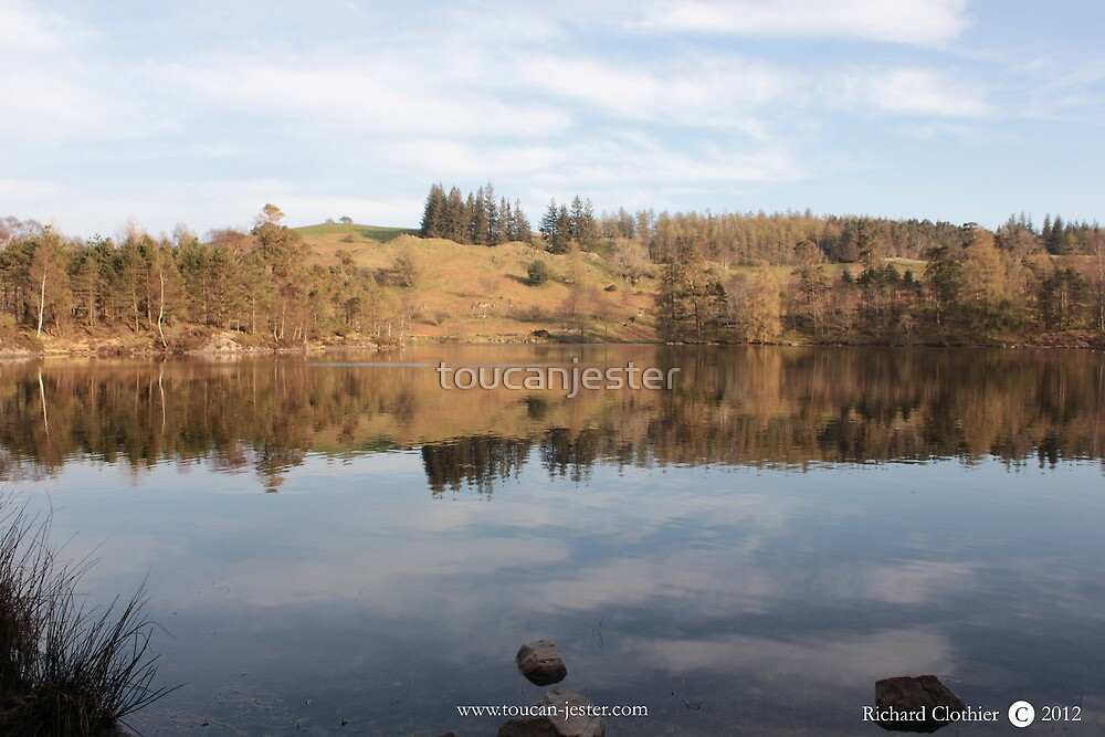 Tarn Hows reflections by toucanjester