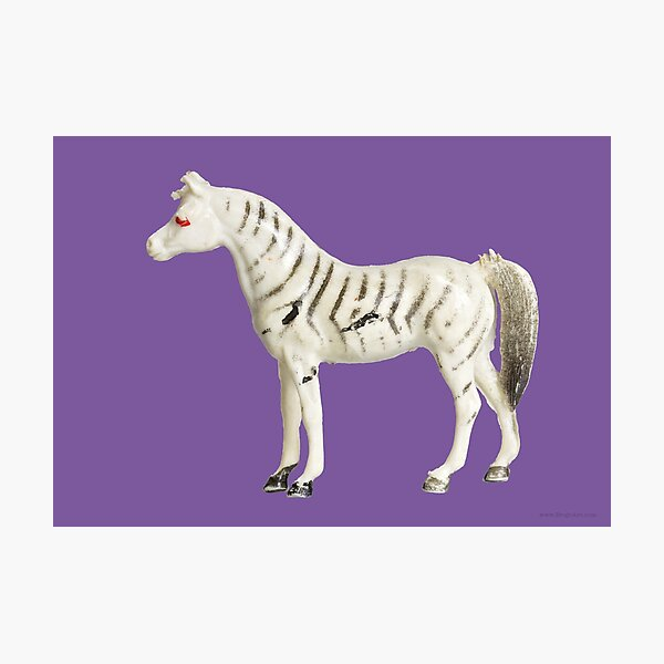 PLASTIC FANTASTIC: Zebra Photographic Print