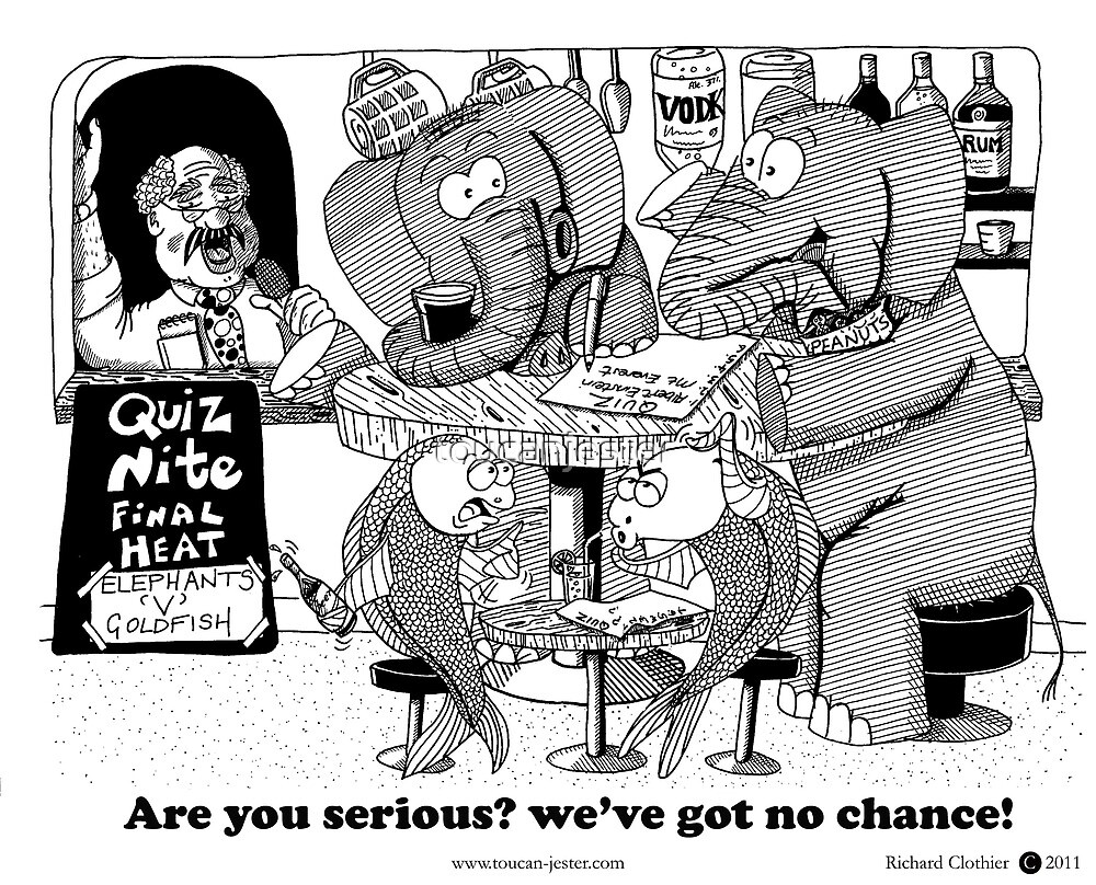 Elephants v's Goldfish pub quiz by toucanjester