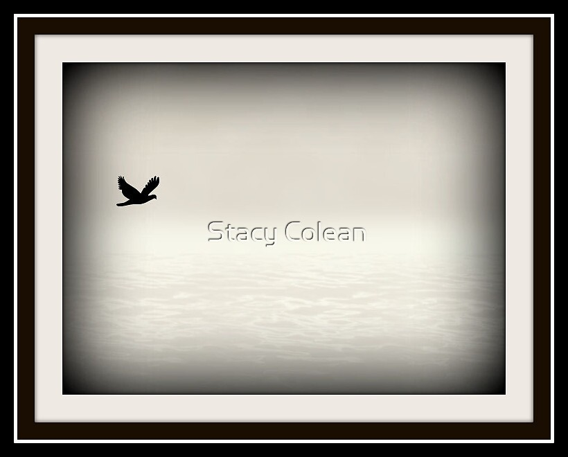 Alone in the Mist by Stacy Colean