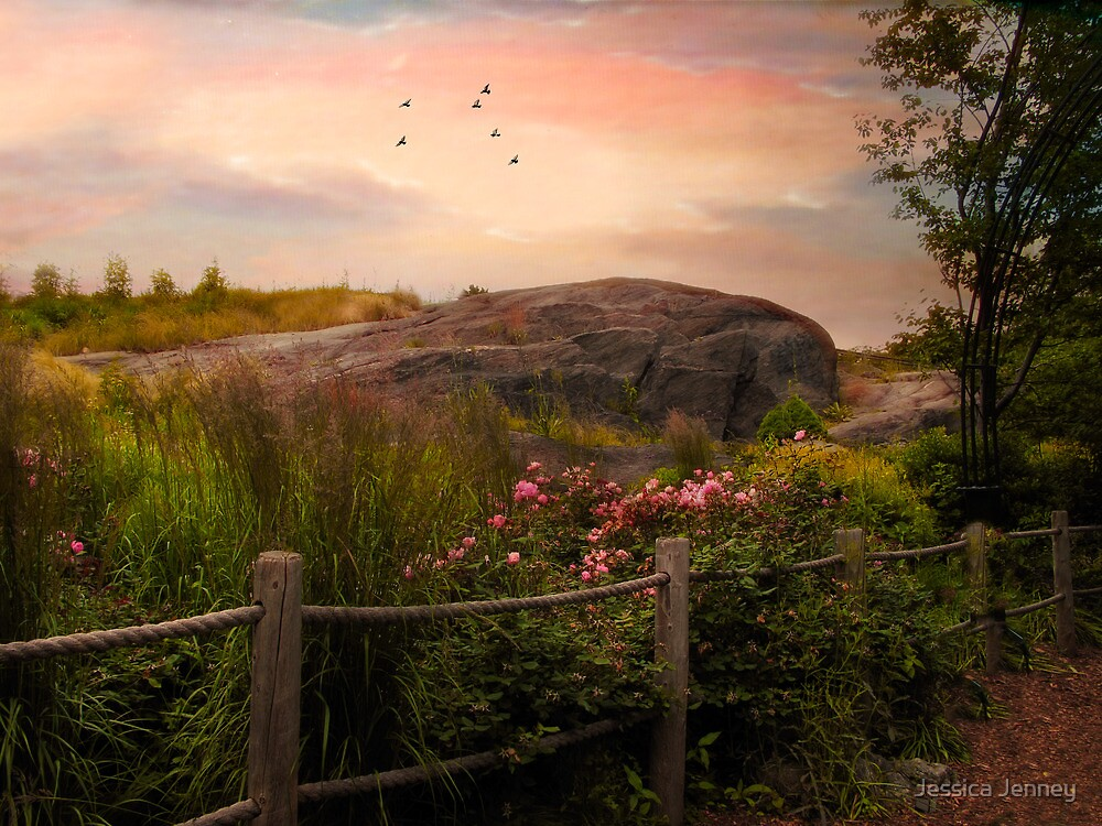 The Rock Garden by Jessica Jenney