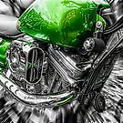 The Green Machine by peter donnan