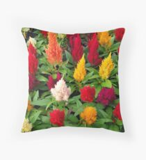 Sizzlin' Throw Pillow