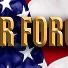 USAF Vet by George Robinson