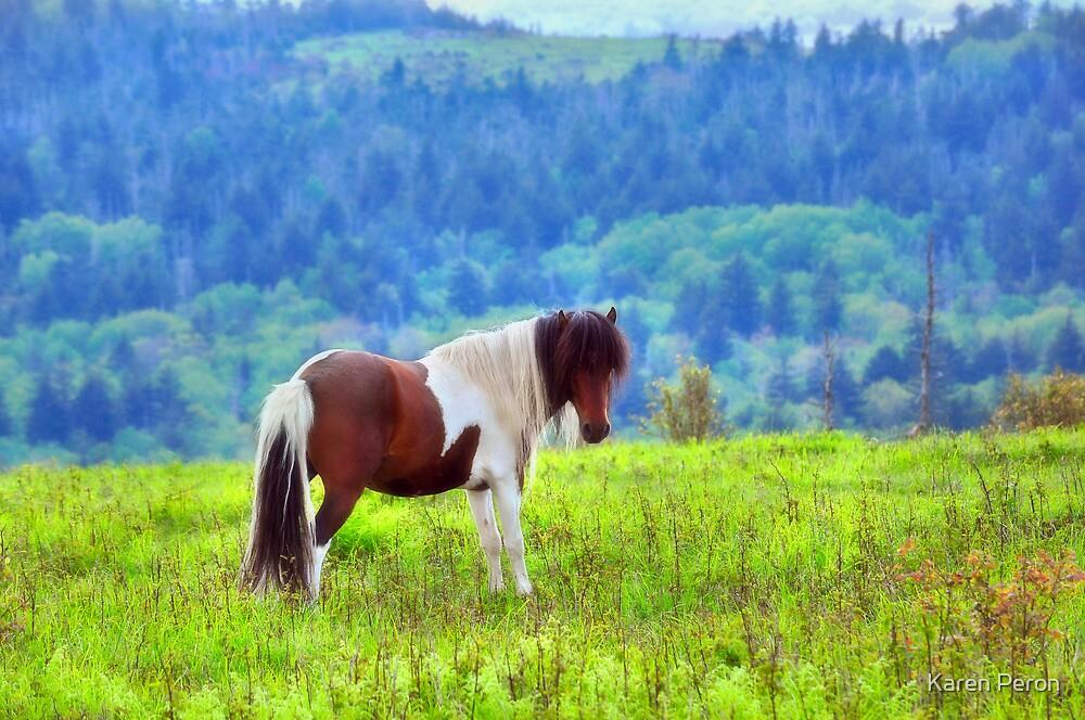 Stallion on the Hillside  by Karen Peron