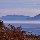 The Dingle Peninsula by Sue Downey