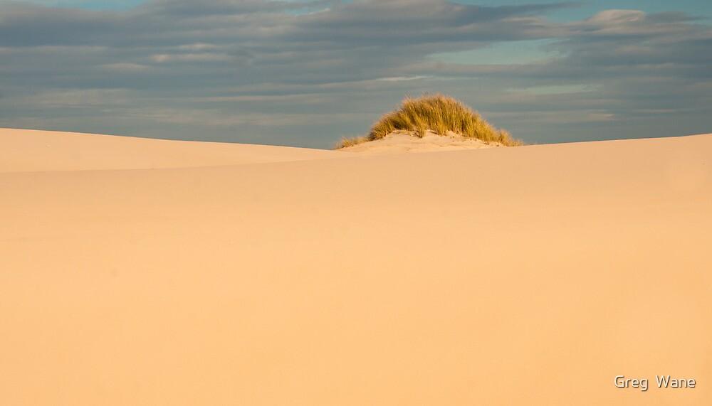 Peron Dune, St Helens by Greg  Wane