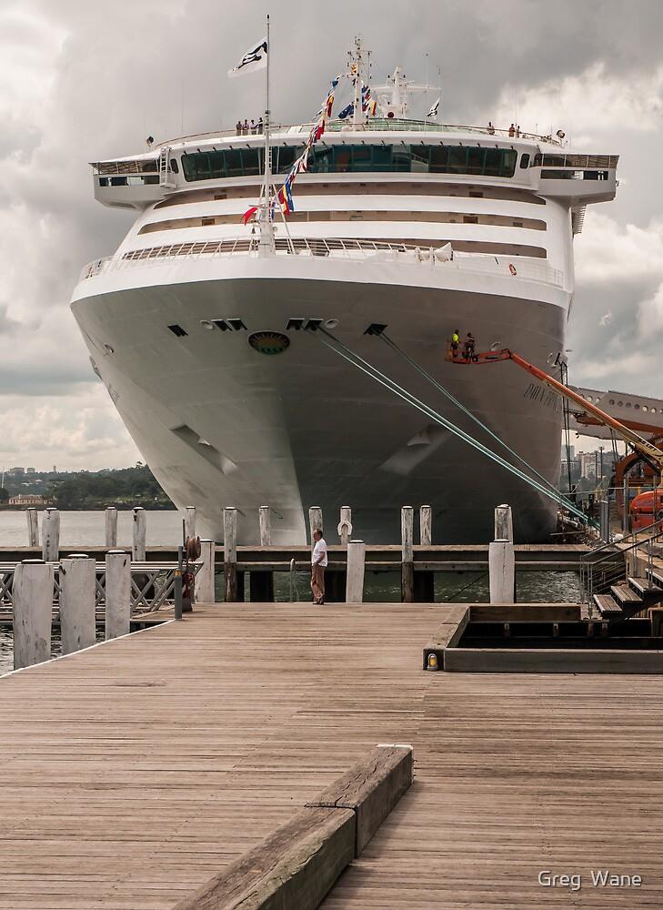 Dawn Princess cruise ship by Greg  Wane