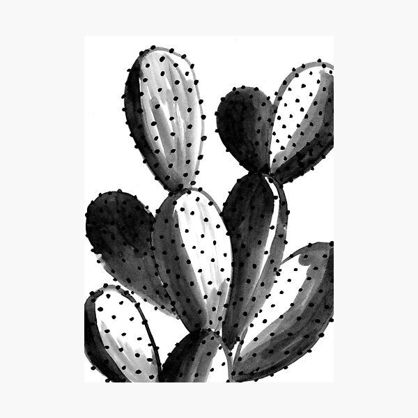 Black and White Cactus Photographic Print