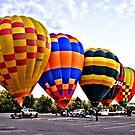 Hot Air Balloons by Kym Bradley