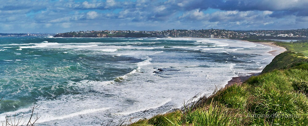 Rough seas from Long Reef lookout by Antoine de Paauw