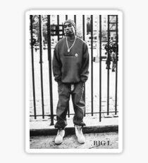 Young Lamont  Sticker