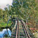 Murumbidgee Railway Bridge by hans p olsen