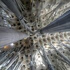 Sagrada Familia Barcelona Interior Ceiling by Laurence Norah