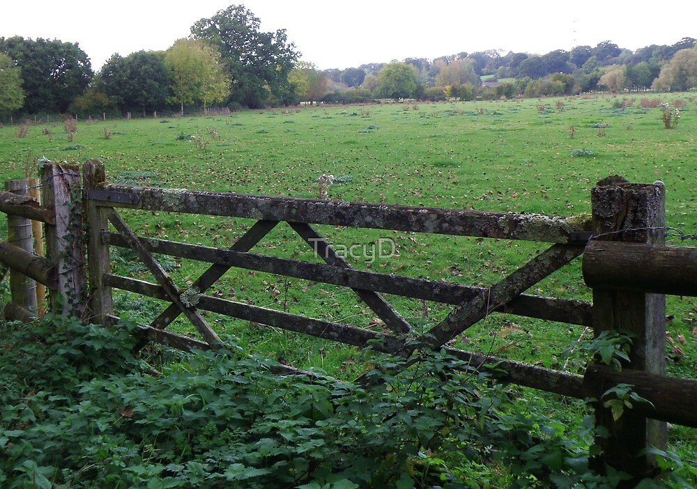 Gate to Greener Pastures! by TracyD