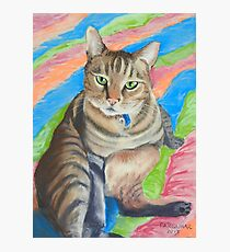 Lupin, King of Cats! Photographic Print