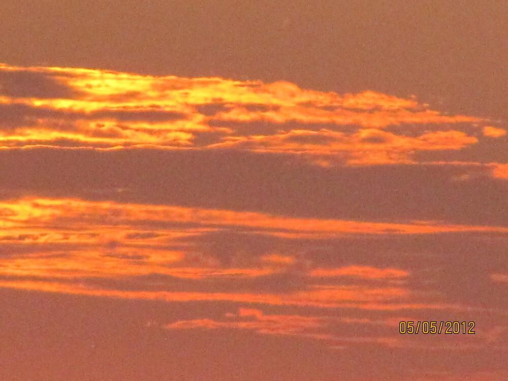 Florida Sunset by aikoaiko4
