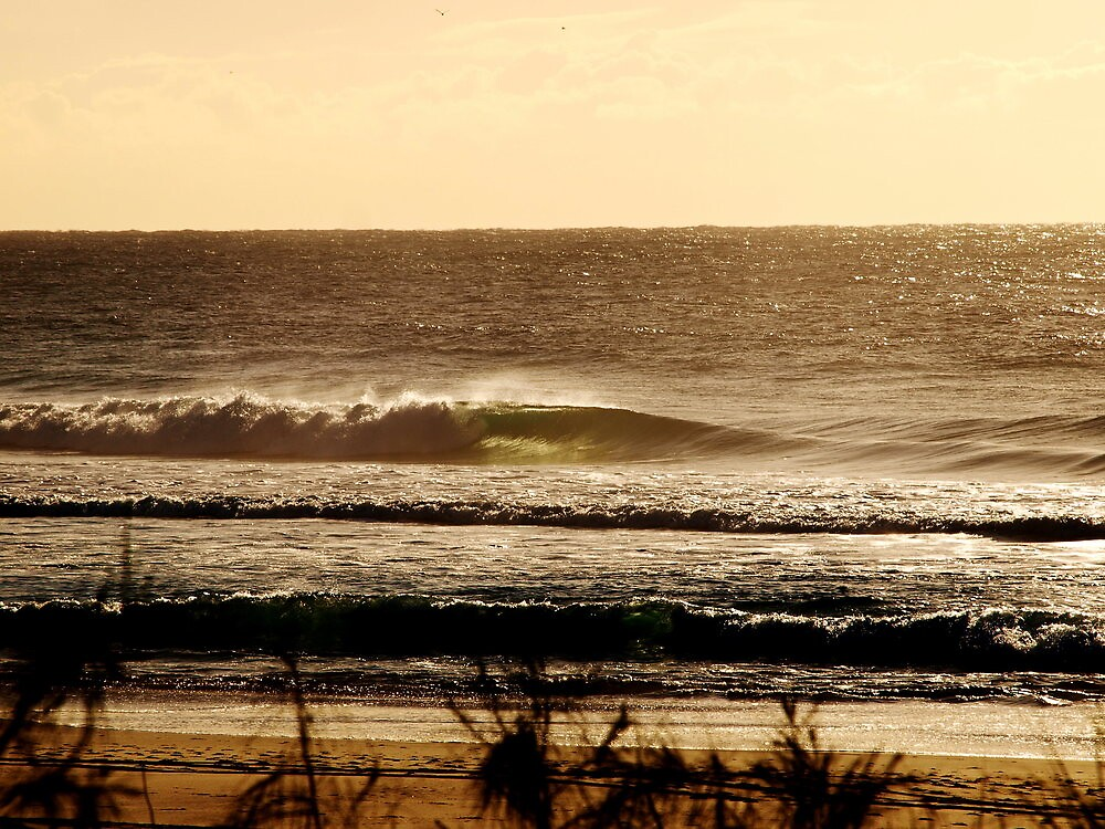 Morning Surf on the Gold Coast by Bardiboy