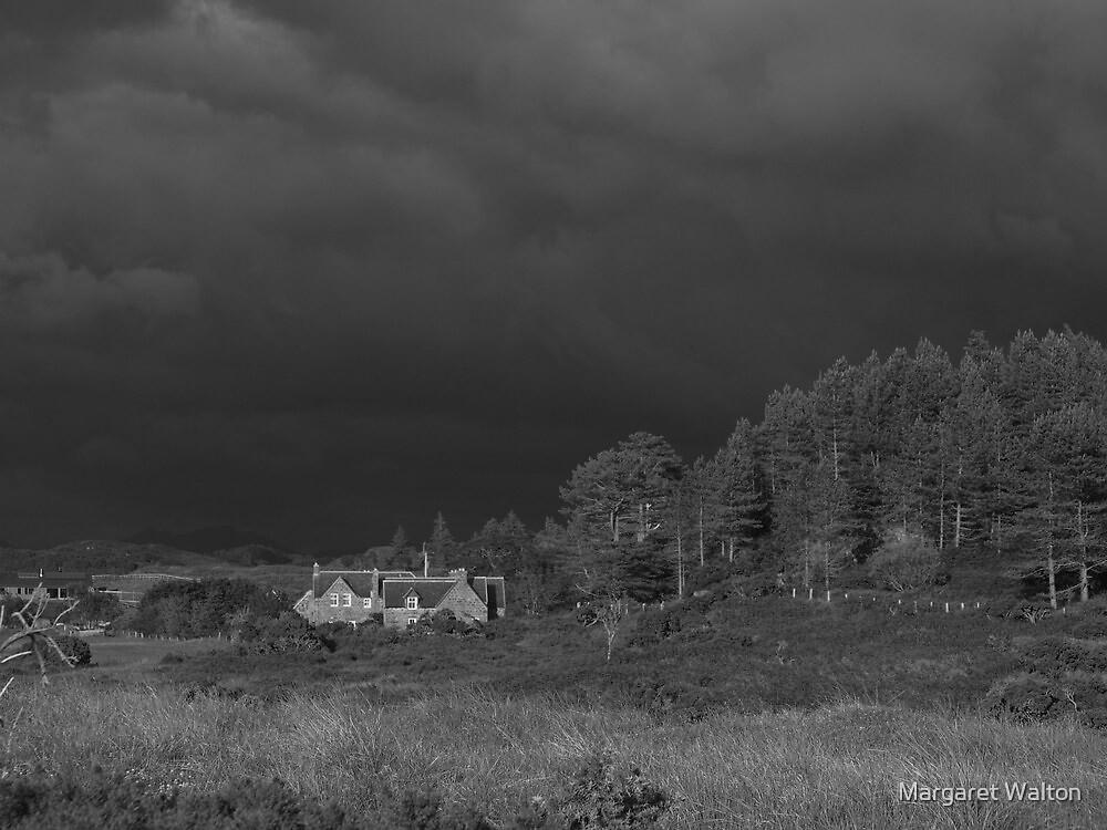 Cometh a storm by Margaret Walton