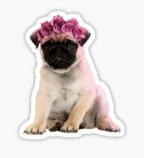 Hipster Pug Puppy Sticker