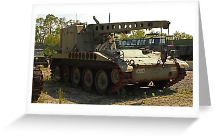 Armored Crane Image 7854 by Thomas Murphy