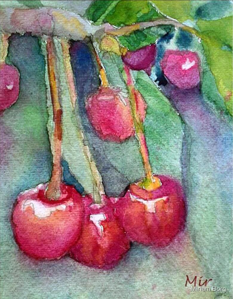 cherries by Miriam Borg