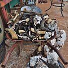 Barrow of bones by Karen01