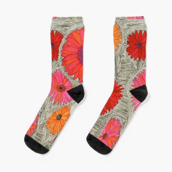 Gerbera Daisy-Red Socks