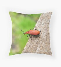 My High-Flying Soldier Throw Pillow