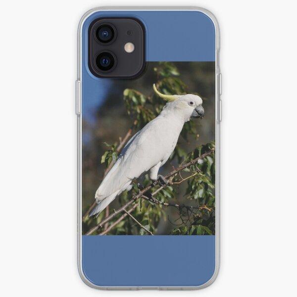 Sulphur-crested Cockatoo, Bungendore, Australia 2013 iPhone Soft Case
