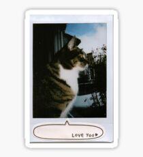 window kitty polaroid Sticker