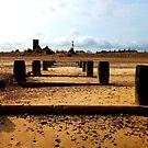 An Ancient Landscape! by DCLehnsherr